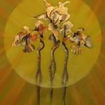 iris d'or